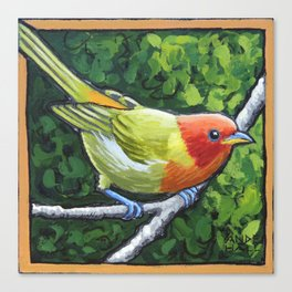 Tanager Teenager Canvas Print