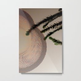 monkey tail tree with big cone Metal Print