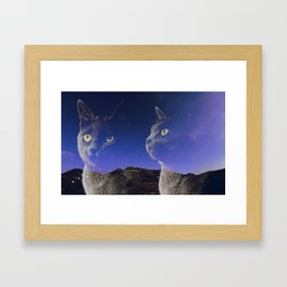 Cat and night sky Framed Art Print