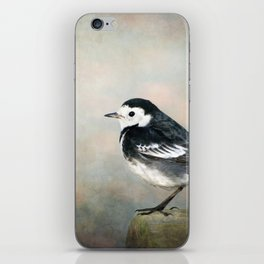 Little Pied Wagtail iPhone Skin
