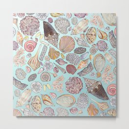 Sanibel Sea Shells Metal Print