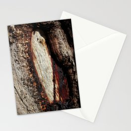 Aboriginal scarred Tree Stationery Cards
