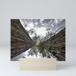 Sequoia National Park Trees Mini Art Print