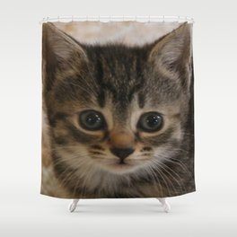 Fairest of them all Shower Curtain