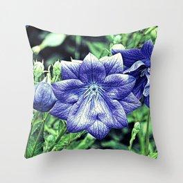 Purple Balloon Flower Floral Art A105 Throw Pillow