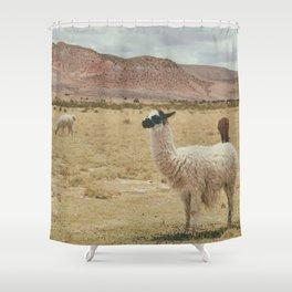 Lama Pampa bolivie Shower Curtain