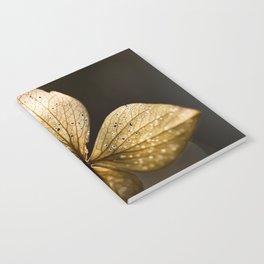 Autumn Scene - Dry Petals with Golden Sunset Light #decor #society6 #buyart Notebook