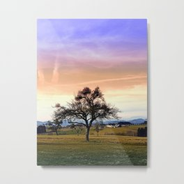 Old tree and amazing cloudy sky | landscape photography Metal Print