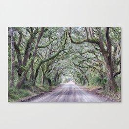 Road to Botany Bay HDR 05 Canvas Print