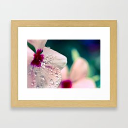 Water and Flower Framed Art Print