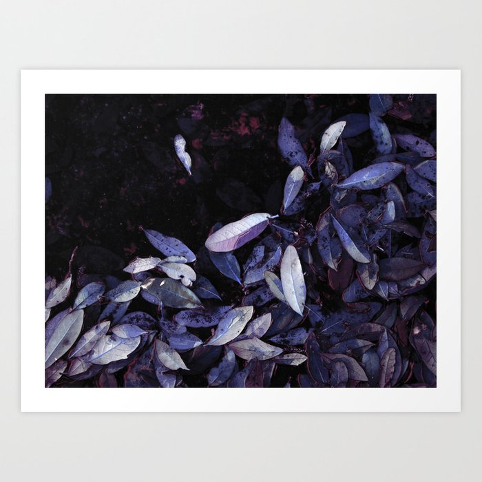 """Blue Leaf Shore"" Art Print"