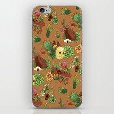Serene Tatooine  iPhone & iPod Skin