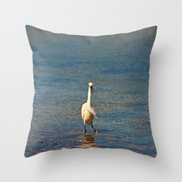A Two-step Throw Pillow