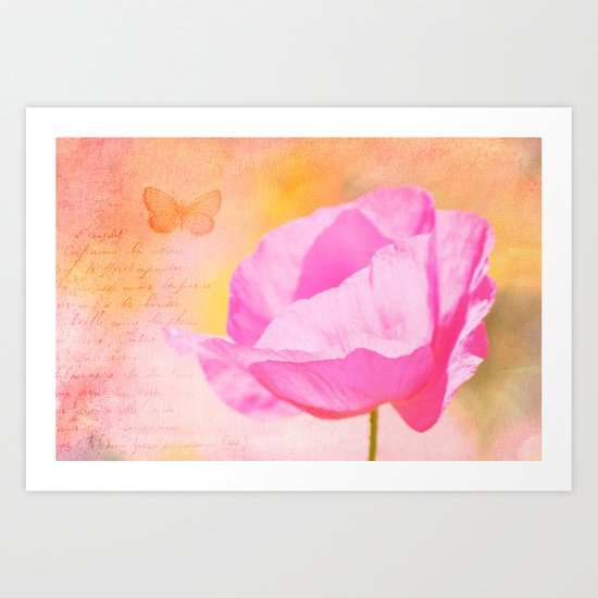 Pink Poppy Flower Art Print