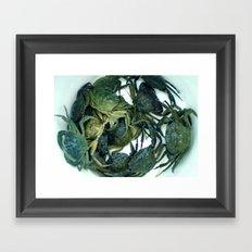 In the crab basket Framed Art Print