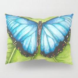 Metamorphosis Pillow Sham