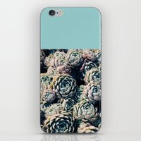 succulents iPhone & iPod Skins featuring Succulents by Leah Flores