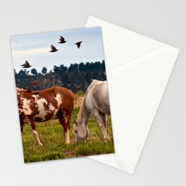Wild Mustangs Grazing Stationery Cards