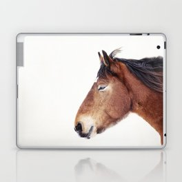 Horse Portrait Laptop & iPad Skin
