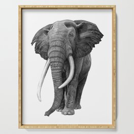Bull elephant - Drawing in pencil Serving Tray