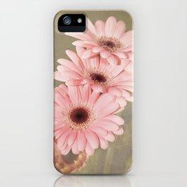 Four Gerberas iPhone Case