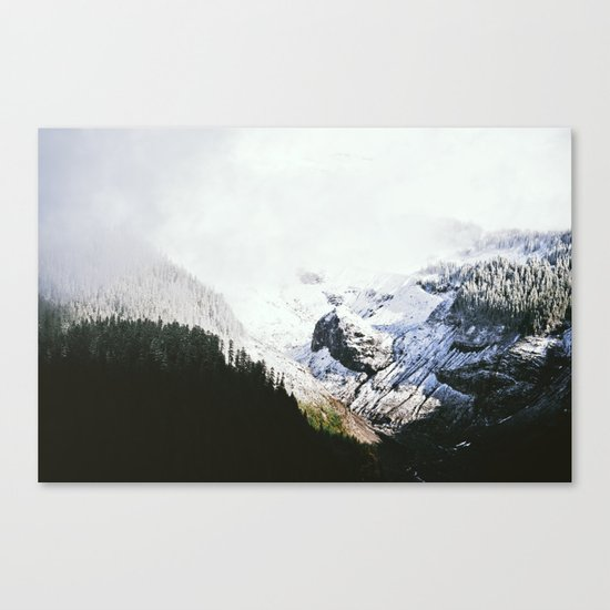 Mountain Valley Contrast Canvas Print