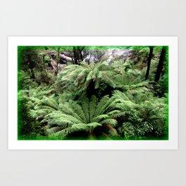 Ferns & Waterfall Art Print