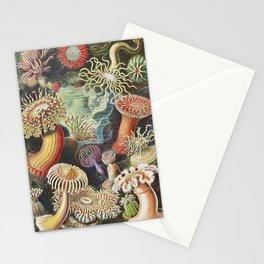 Marine creatures by German illustrator. Finest German art. Stationery Cards