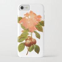 botanical iPhone & iPod Cases featuring Botanical by CAB Architects