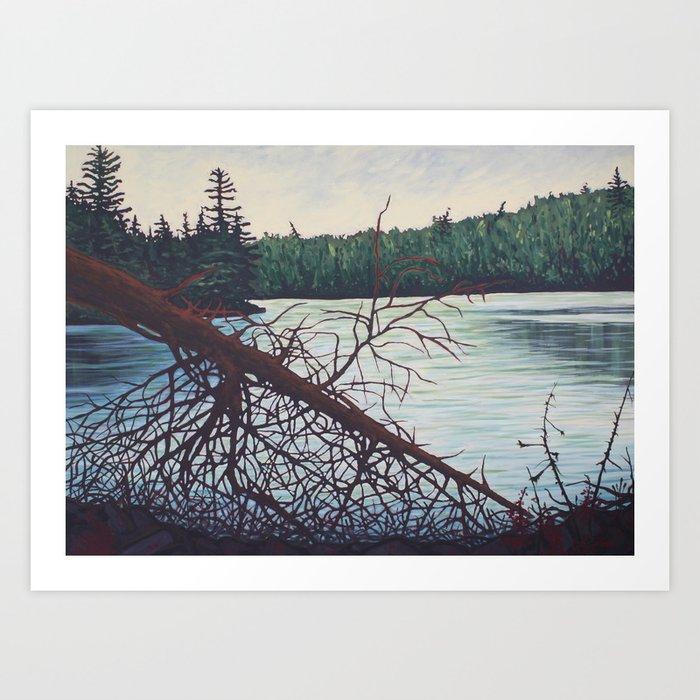 Raven Lake, Algonquin Park Art Print