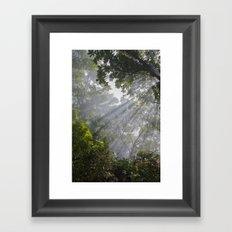 I Saw The Light Framed Art Print
