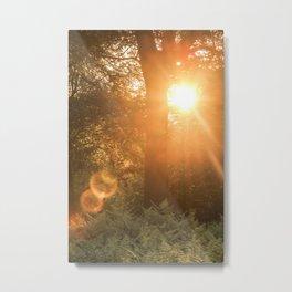 Summer's Coming Metal Print