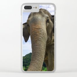 Elephant in Northern Thailand Clear iPhone Case