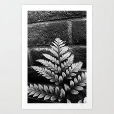 Nature & Brick Art Print