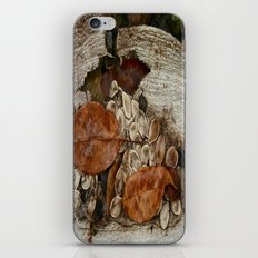 Remains iPhone & iPod Skin
