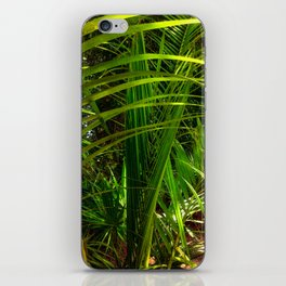 New Palm Frond iPhone Skin