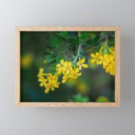 Yellow Blossoms 2 Framed Mini Art Print