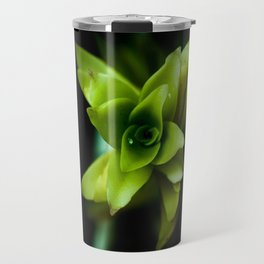 Aptenia succulent plant Travel Mug