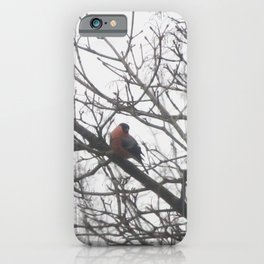 Little Bird | Nature Print | Copenhagen Denmark iPhone Case