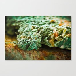 upper crust II Canvas Print