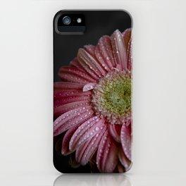 Gerbera spring iPhone Case