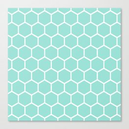 Menthol green honeycomb pattern Canvas Print