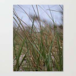 """""""Grass in the Wind""""  Canvas Print"""