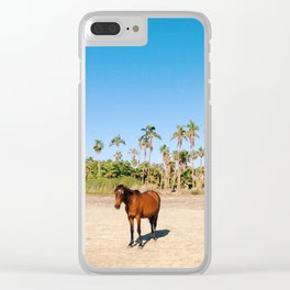 Wild horse on a beach with palm trees Clear iPhone Case
