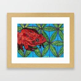 Frog #2 Framed Art Print