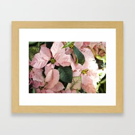 Pretty in Pink  |  The Plant Life Framed Art Print