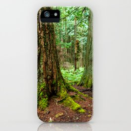 Trail of the Cedars iPhone Case