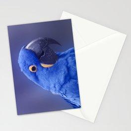 Blue Hyacinth Macaw - Anodorhynchus hyacinthinus - Puohokamoa Hoolawa Maui Hawaii Stationery Cards