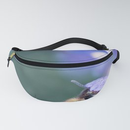 Bee insect foraging pollination process on lavender flower Fanny Pack
