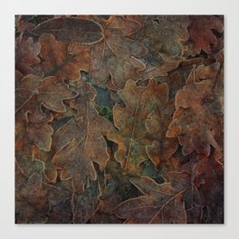 Winter's Gold Canvas Print